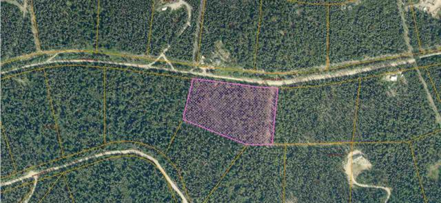 NHN Cascade Road, Fairbanks, AK 99709 (MLS #136981) :: Madden Real Estate