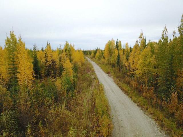 NHN Toolik Drive, North Pole, AK 99705 (MLS #137090) :: Madden Real Estate