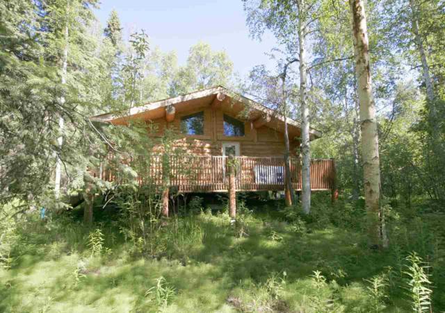 1125 Chickadee Loop, Fairbanks, AK 99709 (MLS #137190) :: Madden Real Estate