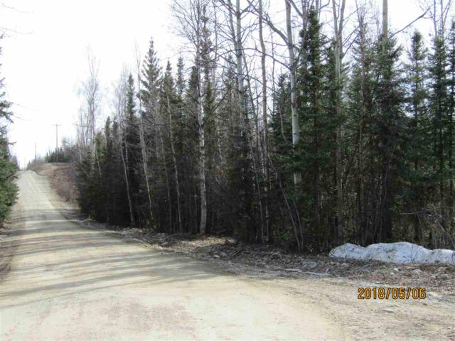 NHN Fleet Street, Delta Junction, AK 99737 (MLS #137204) :: Madden Real Estate