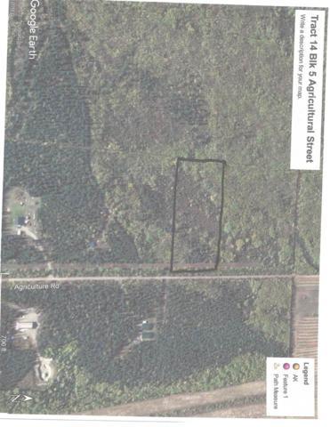 Tr 14 Agricultural Street, Delta Junction, AK 99737 (MLS #137207) :: Madden Real Estate