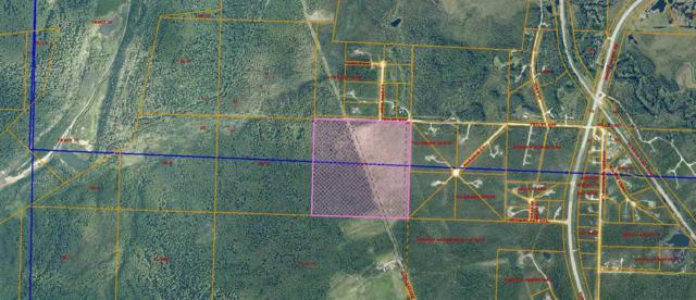 NHN Trilby Avenue, Fairbanks, AK 99709 (MLS #137243) :: Madden Real Estate