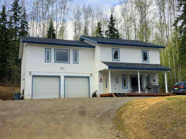2970 North Point Court, Fairbanks, AK 99709 (MLS #137245) :: Madden Real Estate