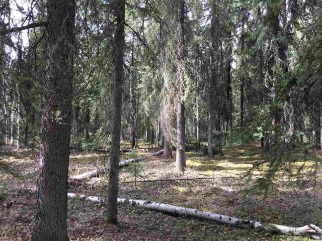 Mcgrath Road, Fairbanks, AK 99712 (MLS #137251) :: Madden Real Estate