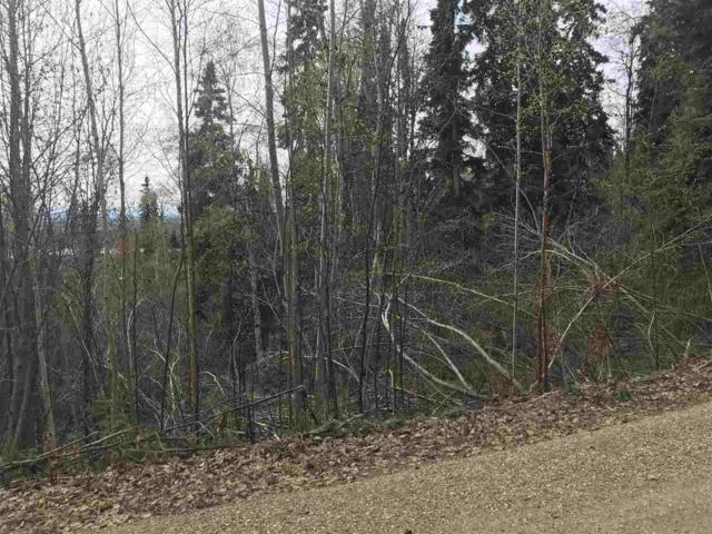 NHN Reeburgh Drive, Fairbanks, AK 99709 (MLS #137258) :: Madden Real Estate