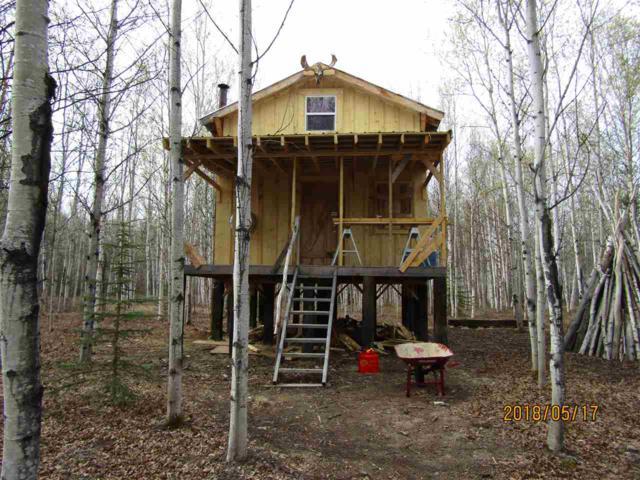 L17-18 Goldeneye Drive, Delta Junction, AK 99737 (MLS #137276) :: Madden Real Estate