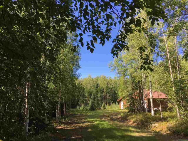 499 Wild Moon Trail, Fairbanks, AK 99712 (MLS #137281) :: Madden Real Estate