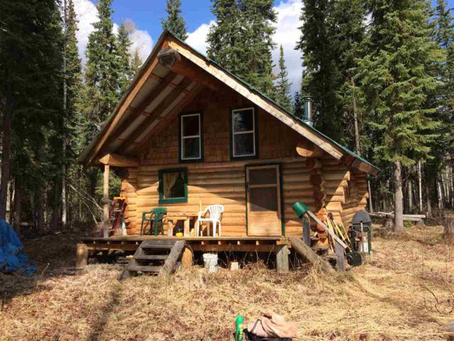 NHN Nhn Remote, North Pole, AK 99705 (MLS #137319) :: Madden Real Estate