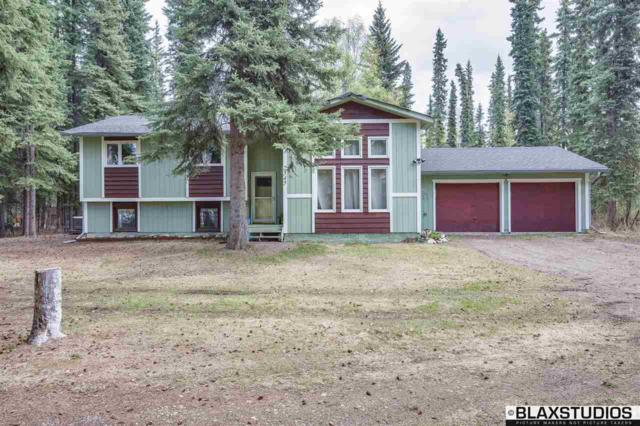 2545 Carrie Lynn Drive, North Pole, AK 99705 (MLS #137320) :: Madden Real Estate
