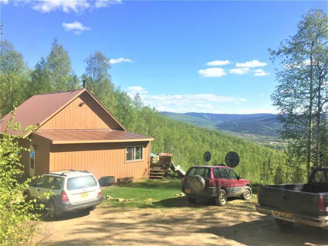 1121 Leuthold Drive, Fairbanks, AK 99712 (MLS #137392) :: Madden Real Estate