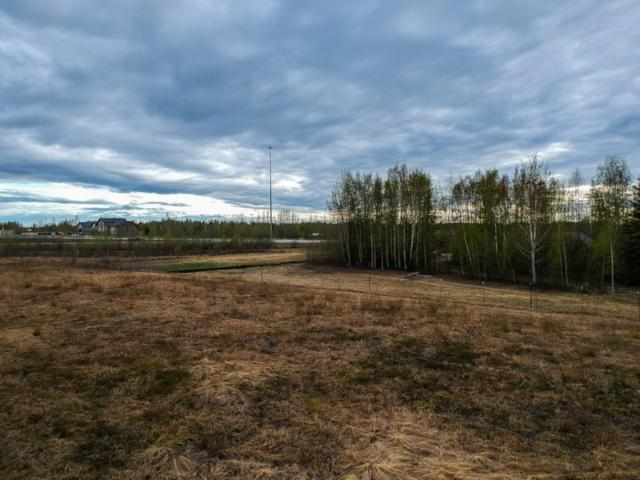 0000 Hurst Road, North Pole, AK 99705 (MLS #137400) :: Madden Real Estate