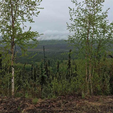 1044 Chad Street, Fairbanks, AK 99709 (MLS #137403) :: Madden Real Estate