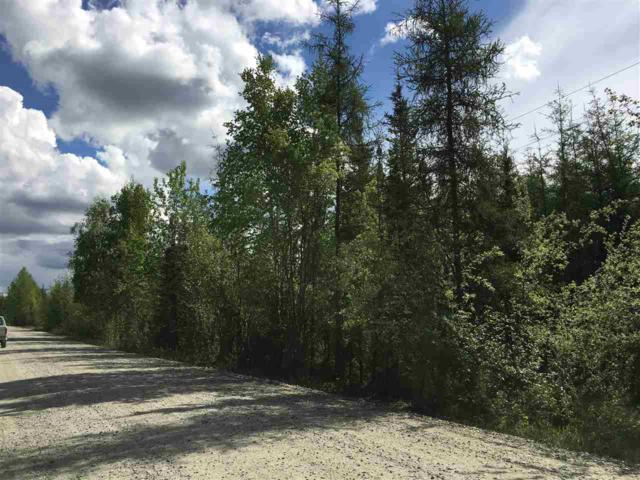 NHN O'neal Road, North Pole, AK 99705 (MLS #137410) :: Powered By Lymburner Realty