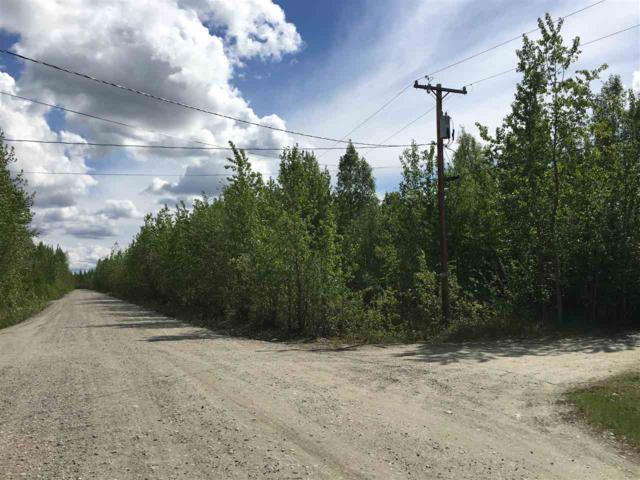 NHN Paige Avenue, Fairbanks, AK 99705 (MLS #137411) :: Powered By Lymburner Realty