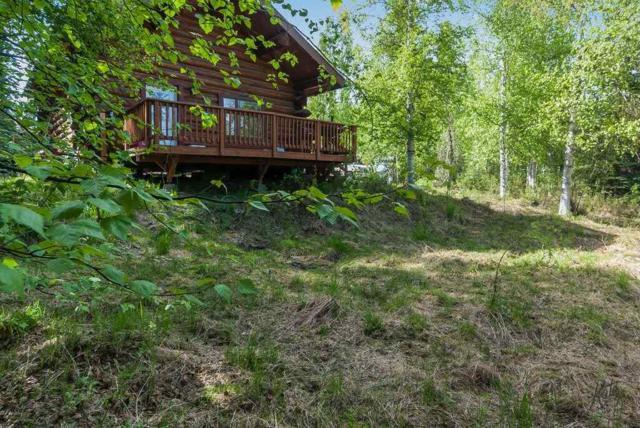 1133 Candamar Road, Fairbanks, AK 99709 (MLS #137415) :: Madden Real Estate