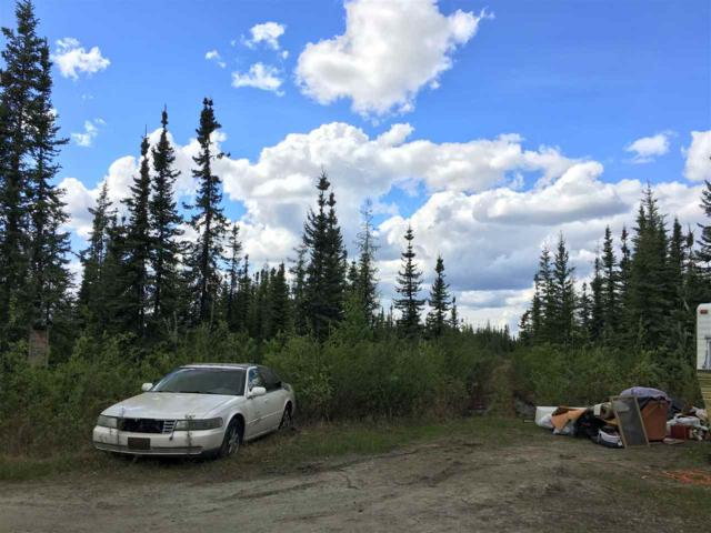 NHN Tunnels Road, North Pole, AK 99705 (MLS #137422) :: Madden Real Estate