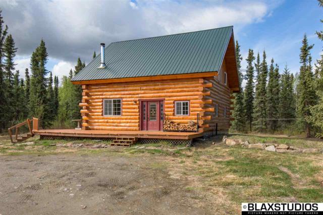 6095 Grieme Road, Salcha, AK 99714 (MLS #137427) :: Madden Real Estate