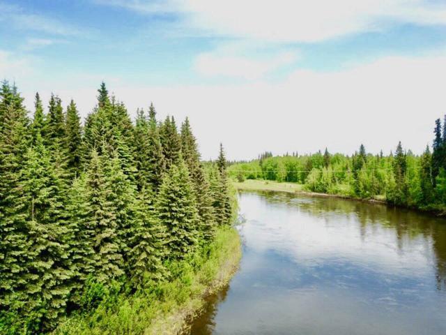 NHN L10B1 Bate Street, Fairbanks, AK 99712 (MLS #137480) :: Madden Real Estate