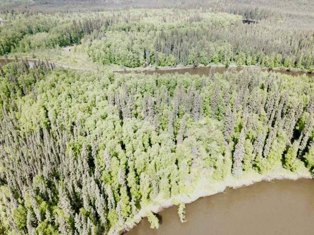 NHN Carl Crosman Way, North Pole, AK 99705 (MLS #137486) :: Madden Real Estate