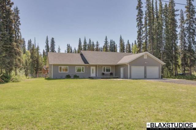 3080 Timberbrook Drive, North Pole, AK 99705 (MLS #137489) :: Madden Real Estate