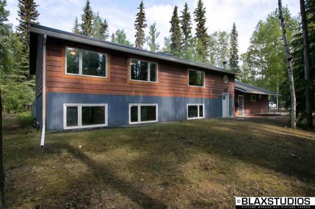 2651 Gold Street, North Pole, AK 99705 (MLS #137594) :: Madden Real Estate