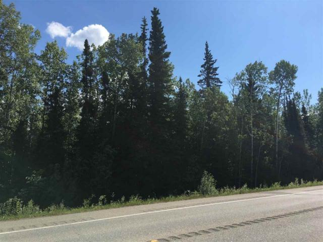 NHN Richardson Highway, Salcha, AK 99714 (MLS #137615) :: RE/MAX Associates of Fairbanks