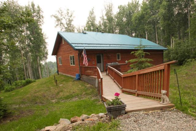 4251 Parks Ridge Road, Fairbanks, AK 99709 (MLS #137619) :: Madden Real Estate
