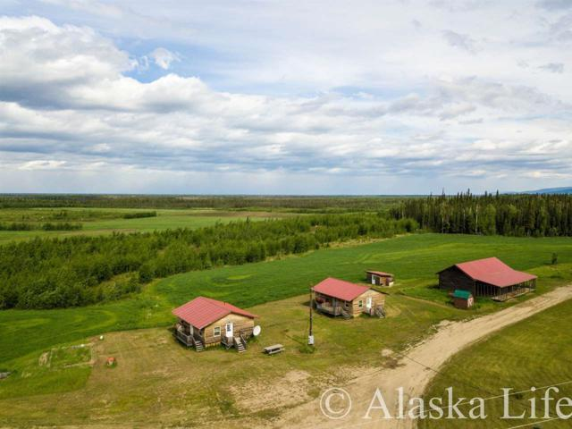 nhn George Parks Highway, Nenana, AK 99760 (MLS #137627) :: Madden Real Estate
