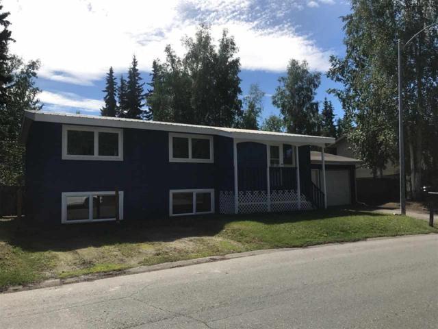 141 Steelhead Road, Fairbanks, AK 99709 (MLS #137666) :: RE/MAX Associates of Fairbanks