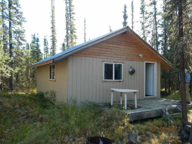 NHN Clearwater River, Delta, AK 99737 (MLS #137667) :: Madden Real Estate