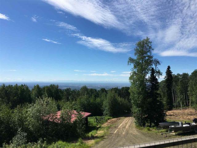NHN Cranberry Ridge Drive, Fairbanks, AK 99709 (MLS #137668) :: RE/MAX Associates of Fairbanks