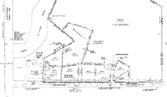 NHN Heartland Avenue, Fairbanks, AK 99712 (MLS #137671) :: RE/MAX Associates of Fairbanks