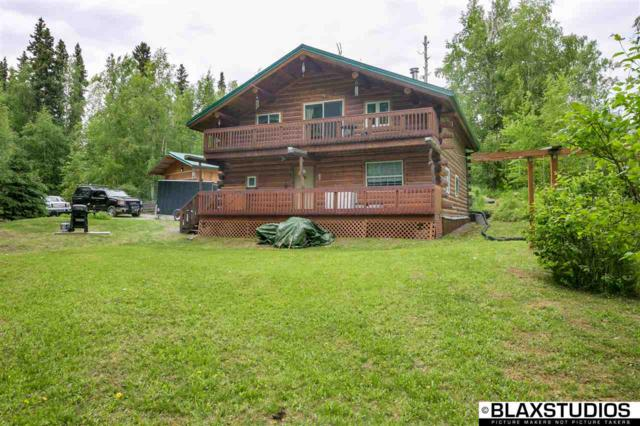 4491 Melan Drive South, Fairbanks, AK 99712 (MLS #137680) :: Madden Real Estate