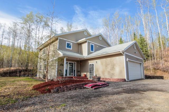 3180 Moominvalley Court, Fairbanks, AK 99709 (MLS #137681) :: Madden Real Estate