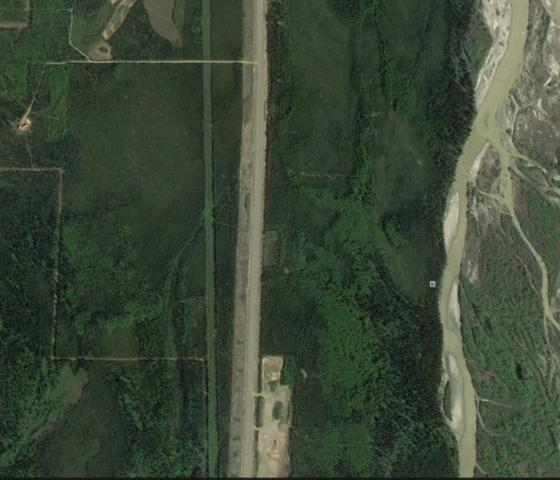 Tract D George Parks Highway, Clear, AK 99744 (MLS #137690) :: Madden Real Estate