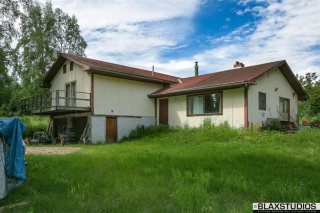3124 Bunch Berry Lane, Fairbanks, AK 99709 (MLS #137741) :: Madden Real Estate