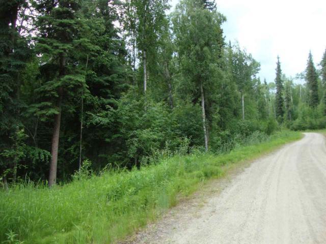 NHN Buffalo Lane, Fairbanks, AK 99712 (MLS #137771) :: Madden Real Estate