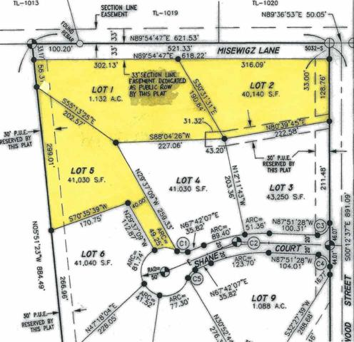 Lots 1, 2, 5 Misewicz, North Pole, AK 99705 (MLS #137784) :: Madden Real Estate