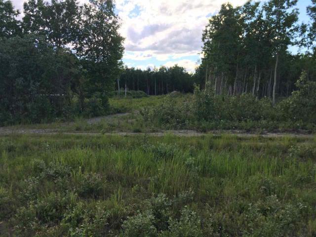 NHN Kristin Drive, Delta, AK 99737 (MLS #137799) :: Madden Real Estate