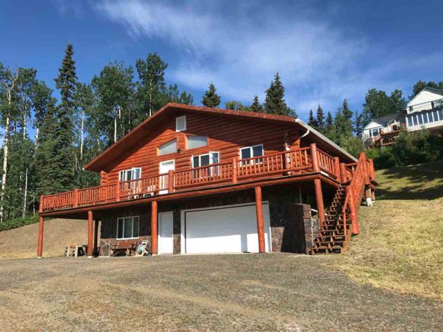 3196 Anella Avenue, Fairbanks, AK 99709 (MLS #137819) :: Madden Real Estate