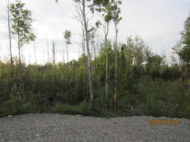 L14 Blk F Hildreth Way, Delta Junction, AK 99737 (MLS #137839) :: Madden Real Estate