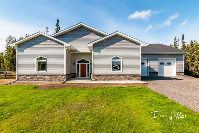 3878 Ejay Lane, North Pole, AK 99705 (MLS #137862) :: Madden Real Estate