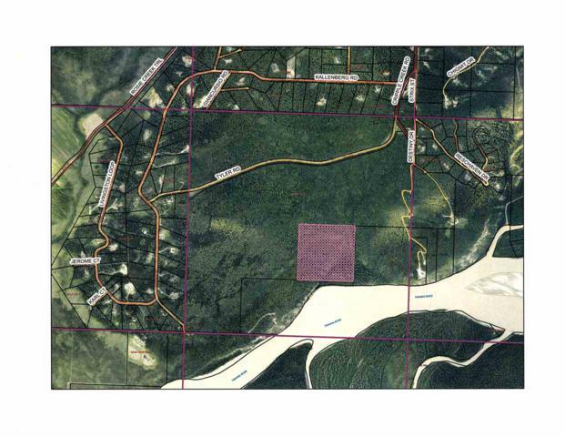nhn Cripple Creek Road, Fairbanks, AK 99709 (MLS #137869) :: Madden Real Estate
