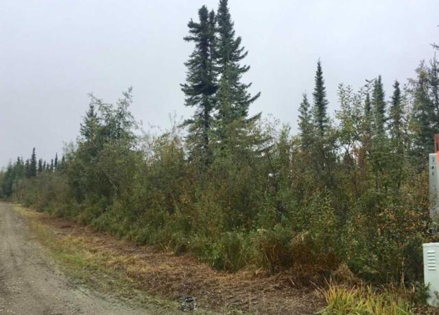 Lot 11 Block 3 Pheasant Drive, North Pole, AK 99705 (MLS #137870) :: Madden Real Estate