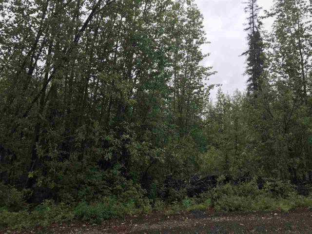 NHN Jessica Loop, North Pole, AK 99705 (MLS #137919) :: Madden Real Estate