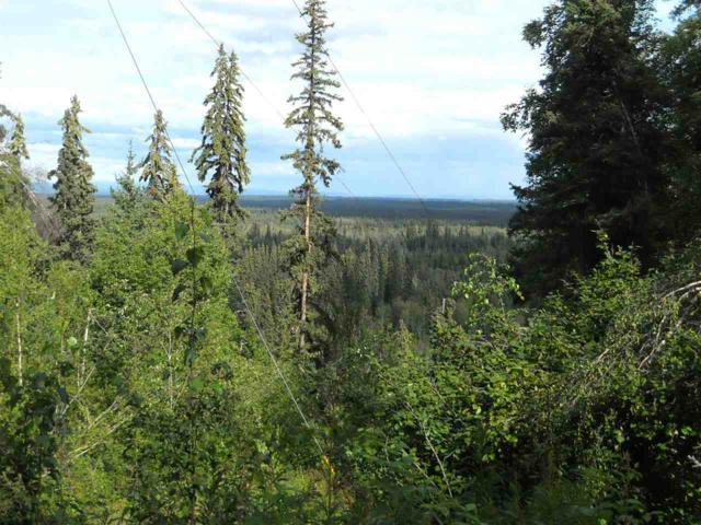 NHN Reschaven Drive, Fairbanks, AK 99709 (MLS #137929) :: Madden Real Estate