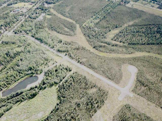 NHN Arctic Gates Road, North Pole, AK 99705 (MLS #137943) :: Madden Real Estate