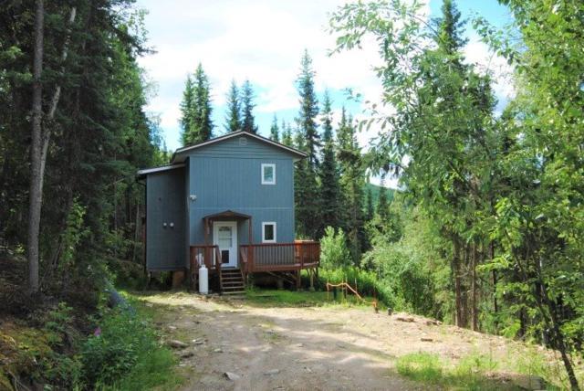 2990 Chena Ester Ditch Road, Fairbanks, AK 99709 (MLS #137968) :: Madden Real Estate
