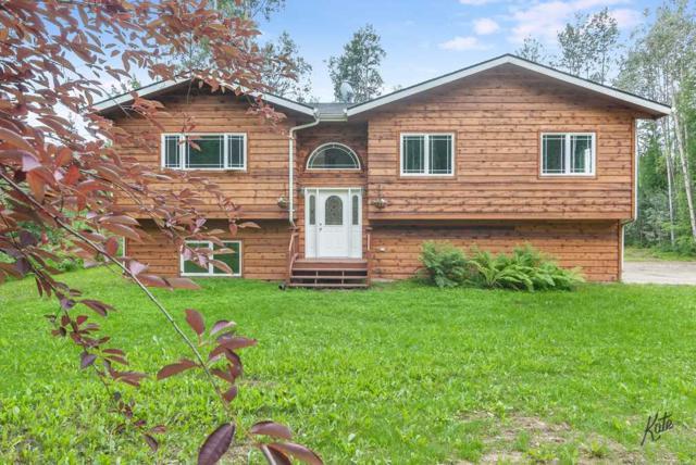 1633 Paydirt Road, Fairbanks, AK 99708 (MLS #138022) :: Madden Real Estate