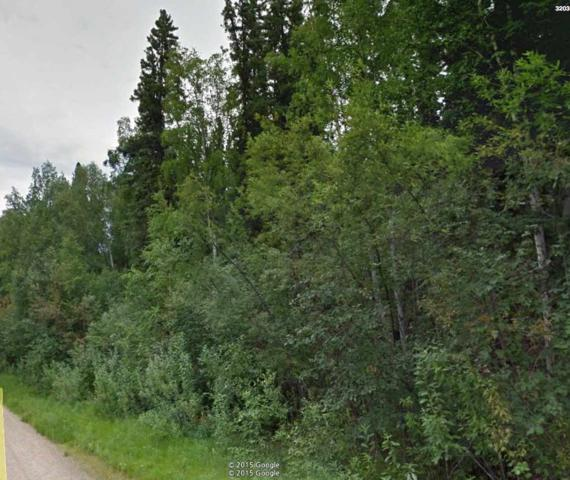 3199 George Burns, Fairbanks, AK 99709 (MLS #138062) :: Madden Real Estate